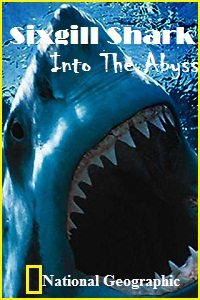 National Geographic: Шестижаберная акула. Погружение в бездну - (National Geographic: Sixgill Shark. Into The Abyss)