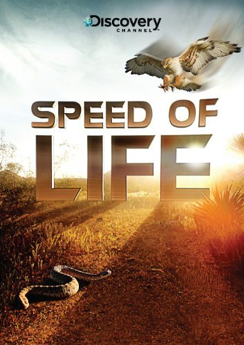 Discovery: �������� ����� - (Speed of Life)