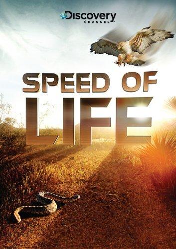 Discovery: Скорость жизни - (Speed of Life)