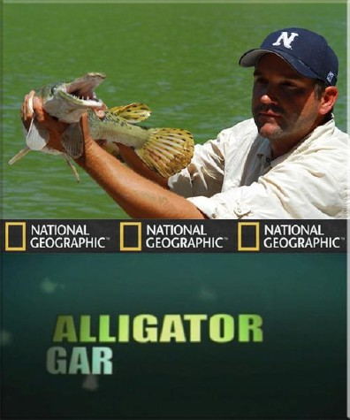 National Geographic : Рыбы-чудовища . Аллигаторова щука - (Monster fish. Alligator gar)