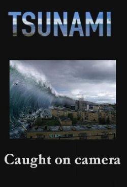 Discovery: Цунами. Глазами очевидцев - (Tsunami. Caught on camera)