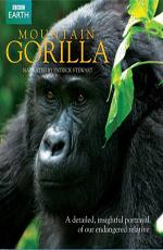 BBC: Горная горилла - (BBC: Mountain Gorilla)