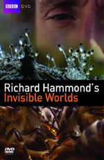 BBC: Невидимые миры - (Richard Hammond's Invisible Worlds)