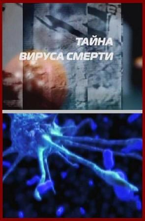 Тайна вируса смерти