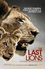 National Geographic: Последние львы - (National Geographic: The Last Lions)