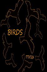 Птицы - (Birds)