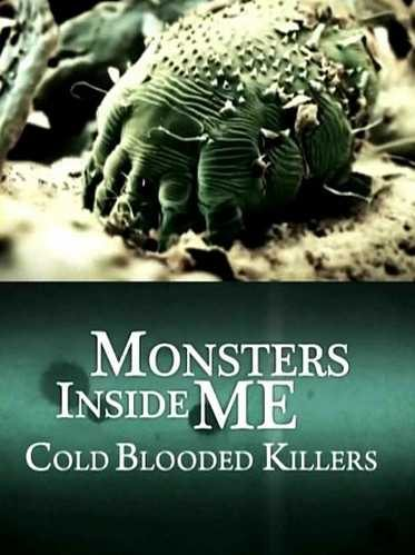 Discovery: Монстры внутри меня: Хладнокровные убийцы - (Monsters Inside Me: Cold Blooded Killers)