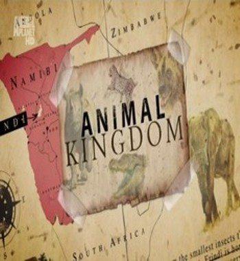 Animal Planet: Царство животных - (Animal Kingdom)