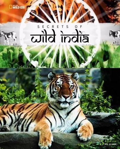 Тайны дикой природы Индии: Хищники джунглей - (Secrets of Wild India: Tiger Jungles)