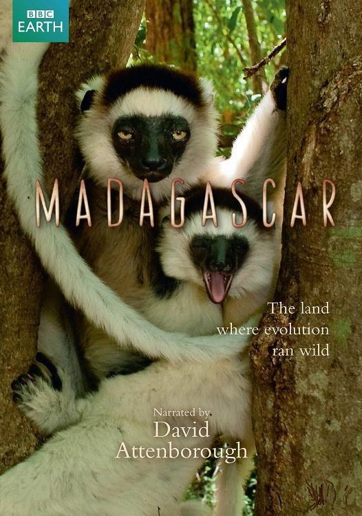BBC: Мадагаскар - (Madagascar)