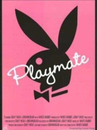 Playboy - Playmates Profiles