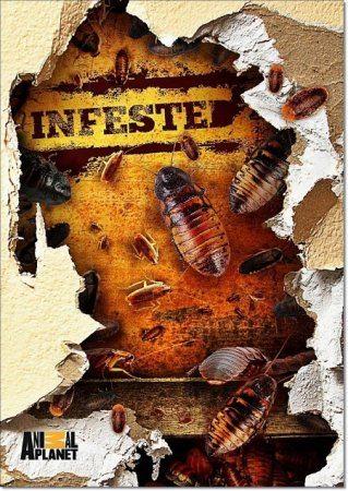 Animal Planet: Вторжение паразитов - (Infested!)