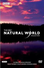 BBC: Мир природы. Последний Гризли Райской Долины - (BBC: The Natural World. The Last Grizzly of Paradize Valley)