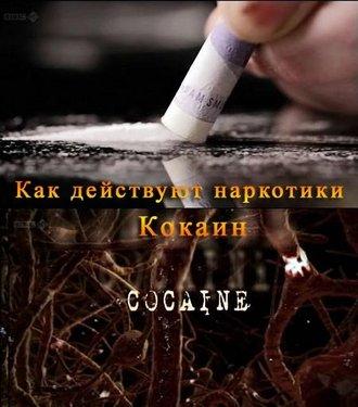 ВВС: Как действуют наркотики: Кокаин - (Р'Р'РЎ: How Drugs Work: Cocaine)