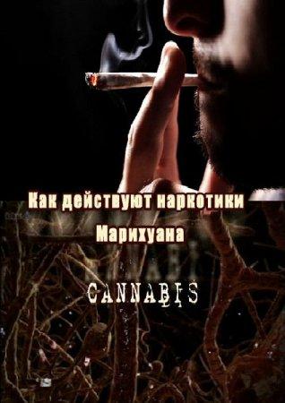ВВС: Как действуют наркотики: Марихуана - (Р'Р'РЎ: How Drugs Work: Cannabis)