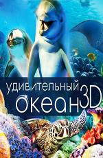 Удивительный океан - (Amazing Ocean)