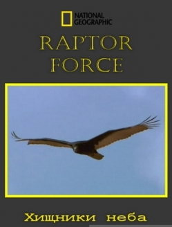 Сила хищных птиц - Raptor Force