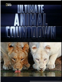 ��������-�����������: ����� - Ultimate Animal Countdown: Soldiers