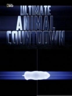 Животные-рекордсмены: Смертоносное оружие - Ultimate Animal: deadly weapon