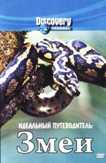 Discovery: Идеальный путеводитель. Змеи - Discovery- Ultimate Guide- Snakes