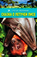 Сказка о летучей Лисе - Flying Fox Fairytale