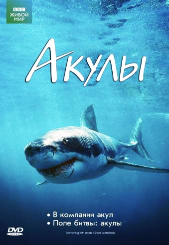 BBC: Акулы - BBC- Sharks