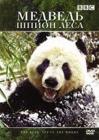 BBC: Медведь: Шпион леса - BBC- Bears- Spy in the Woods