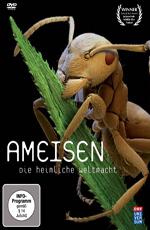 Муравьи: тайная сила природы - Ants- Natures secret power