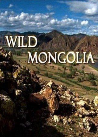 Дикая Монголия - Wild Mongolia