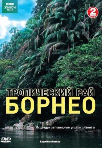 BBC: Живой мир. Тропический рай Борнео - BBC- Expedition Borneo