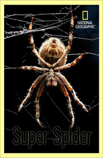 National Geographic. Супер паук - National Geographic. Super Spider