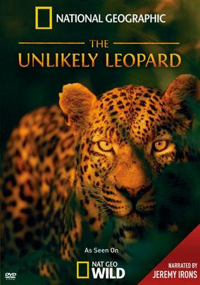 National Geographic: Необычный леопард - National Geographic- The Unlikely Leopard