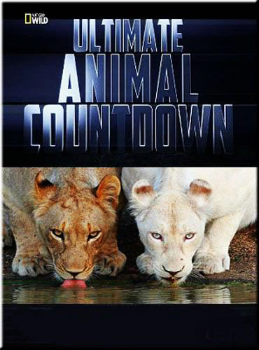 National Geographic : ��������-����������� - National Geographic- Ultimate Animal Countdown