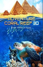 ����������� � ����������� ����: ��������� ����� ������ 3D - Adventure Coral Reef- Under the Sea of Egypt 3D