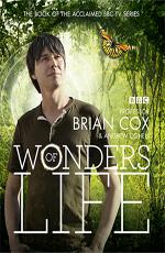 BBC: Чудеса жизни - BBC- Wonders of Life