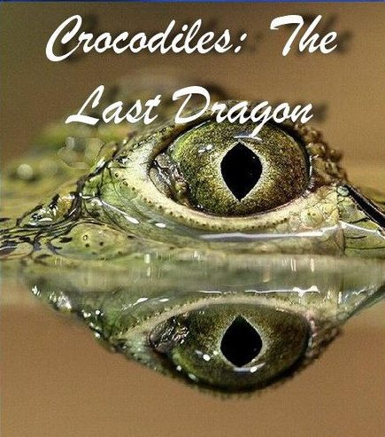 ���������: ��������� ������ - Crocodiles- The Last Dragon