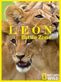Война львов - Lion Battle Zone