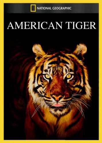 Американский тигр - American Tiger