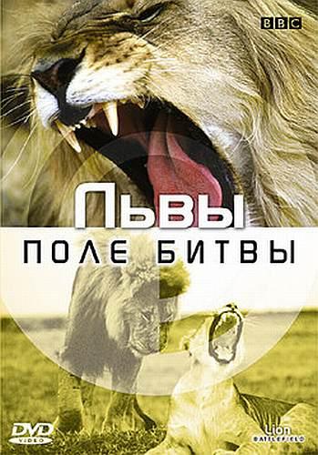 BBC: Поле битвы. Львы - BBC- Lion Battlefield