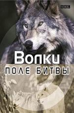 BBC: Поле битвы. Волки - BBC- Wolf Battlefield