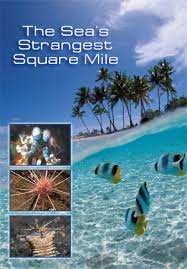 Самое странное место в океане - The Sea's Strangest Square Mile
