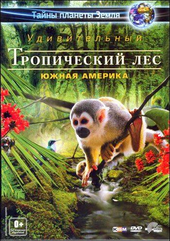 Тайны планеты Земля. Удивительный тропический лес: Южная Америка - Fascination Rainforest