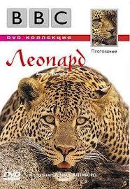 BBC Жизнь животных: Леопард - BBC The Wildlife Specials- Leopard