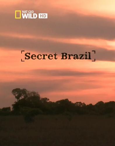 Nat Geo Wild: Неизвестная Бразилия - Nat Geo Wild- Secret Brazil