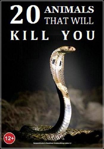 Nat Geo Wild: 20 животных, которые могут вас убить - Nat Geo Wild- 20 Animals that Will Kill You