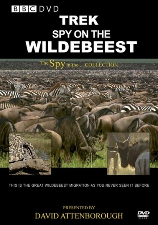 Дикая природа: шпион среди антилоп гну - Trek- Spy on the Wildebeest