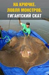 На крючке: Ловля монстров. Гигантский скат - National Geografic- Monster Fish. Giant Stingra