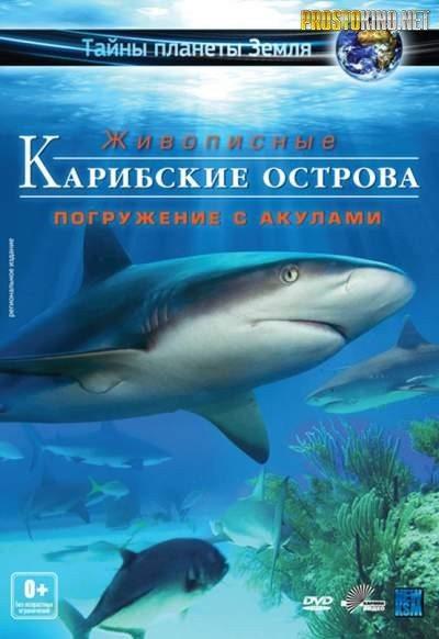 Карибские острова : Погружение с акулами - Adventure Carribean - Diving With Sharks