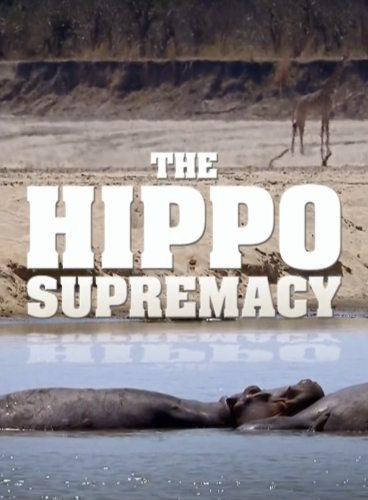 Nat Geo Wild: Превосходство бегемота - The Hippo Supremacy