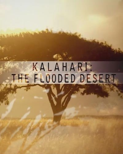 National Geographic: Калахари. Затопленная Пустыня - National Geographic- Kalahari. The Flooded Desert